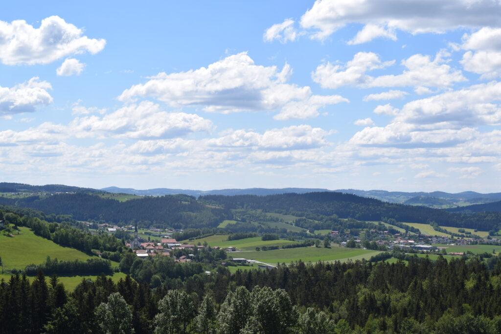 Kienzlberg-Blickrichtung-Grainet-Fuerholz